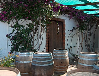 Wine barrels at Santo Tomas winery
