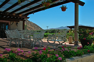 L.A. Cetto Winery outdoor picnic areas