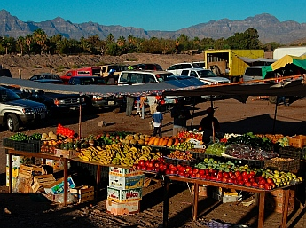 Sunday Farmer's Market Loreto, Baja California Sur, Sea of Cortez, Mexico