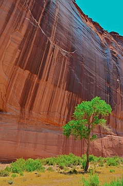 Awe-inspiring drippy stripes on the cliffs surround White House Ruin, Chelly National Park, Arizona.