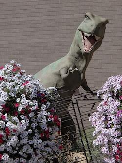 Dinosaur Museum Vernal Utah