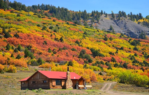 Ridgway Colorado Fall Foliage Dallas Creek Road San Juan Mountains Dallas Divide
