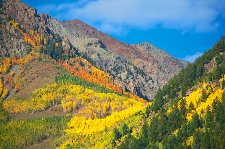 Last Dollar Road Colorado Fall Foliage