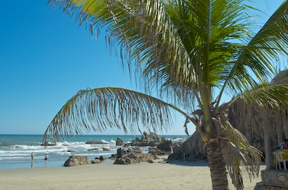 From our cruising blog - a palm tree shades Playa La Bocana