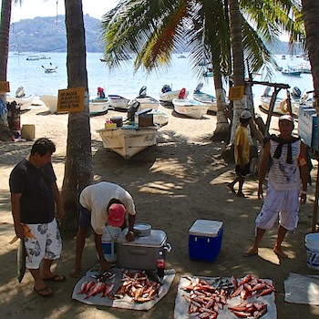 Zihuatanejo fish market Playa Principal Mexico sail blog