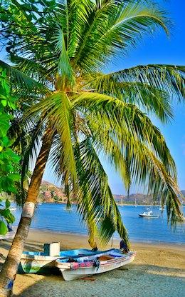 sailing blog Zihuatanejo palm trees and pangas