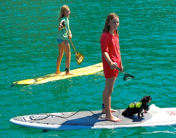 Paddleboard kids and dog sail blog