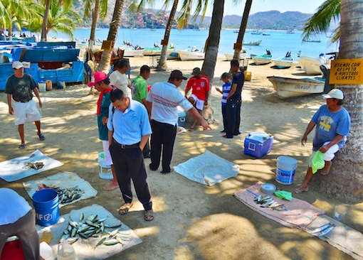 Zihuatanejo fish market cruising blog