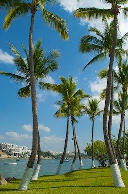 sail blog Las Hadas Resort manzanillo mexico