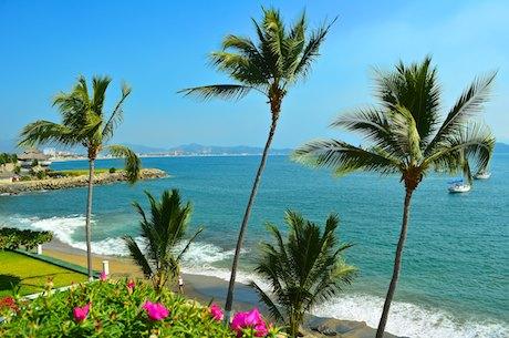 Las Hadas palms manzanillo mexico