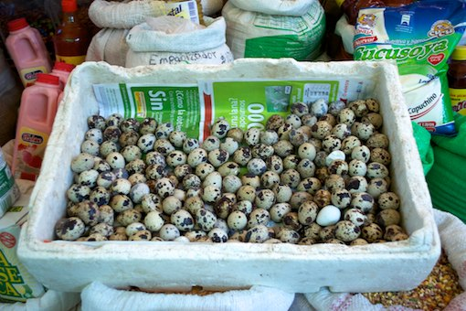 Patzcuaro indian market eggs cruising blog