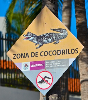 Zona de Cocodrilos