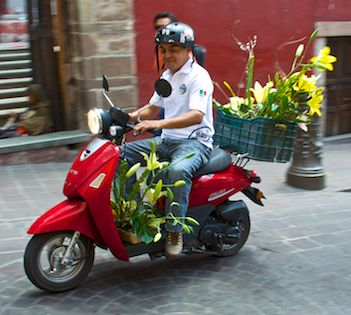Scooter carrying lilies