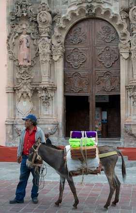 Donkey carrying wine for Callejoneadas
