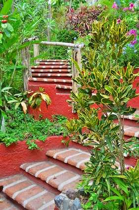 Casa Maguey Garden La Manzanilla