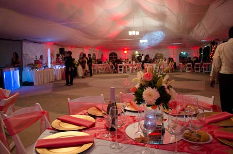 Everything around the dance floor was decorated in pink.