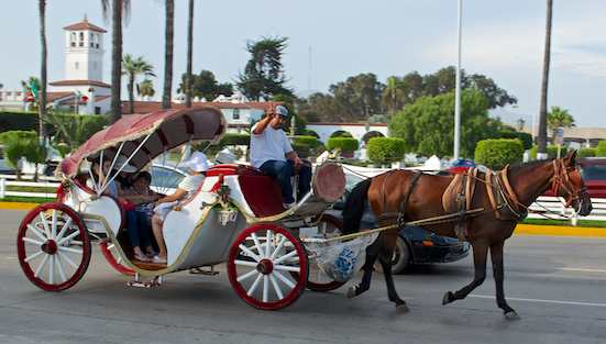 Horse and buggy Ensenada