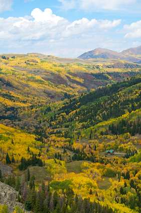 South of Telluride - autumn color