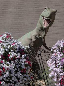 Dinosaur at Dinosaur National Monument