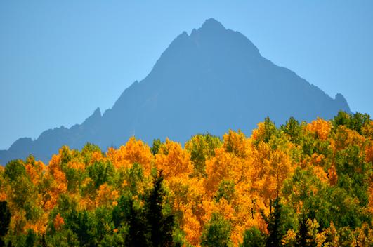 Mountain silhouette Dallas Divide autumn leaves