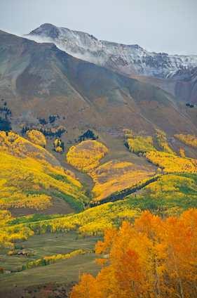 Autumn Color in Telluride Colorado