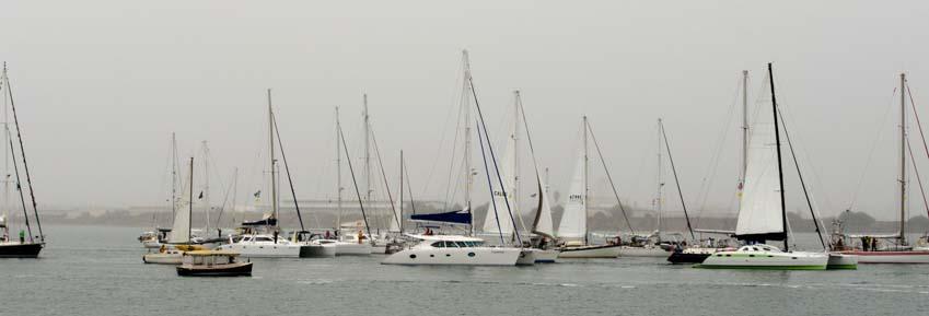 Baja Ha-ha fleet