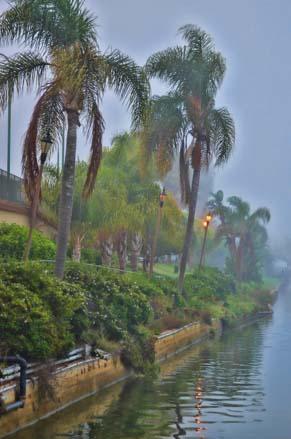 Morning mist on Shelter Island