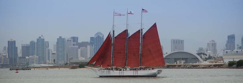 Tall ships of every kind sailed past