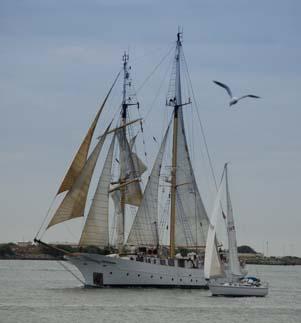 Tall ships and sailboats on San Diego Bay