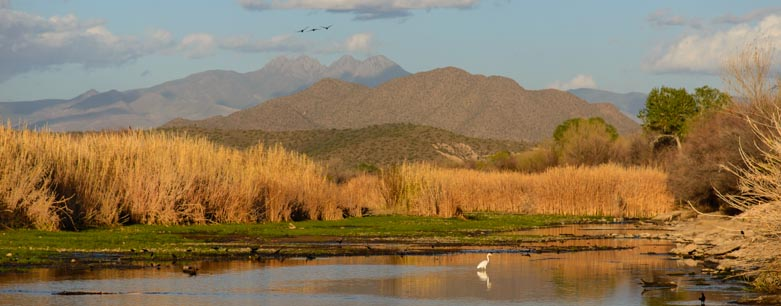 Salt River Phoenix Arizona with four peaks
