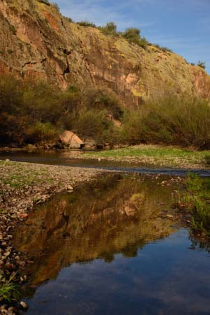 Reflections in the Salt River