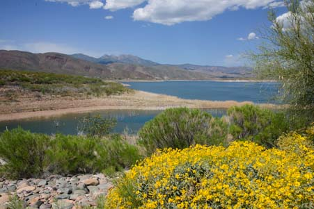 Roosevelt Lake Windy Hill Campground