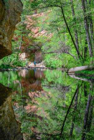 Trees reflecting in Oak Creek Arizona