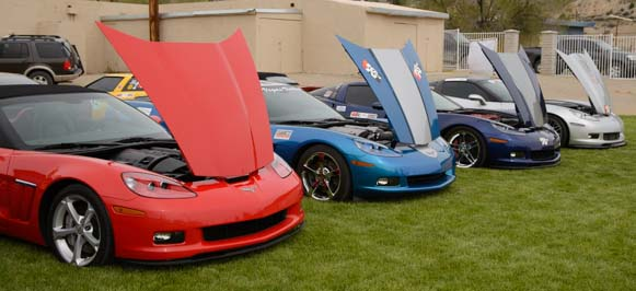 Race cars with hoods up