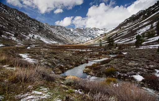 Stream running through Lamoille Canyon near Elko Nevada