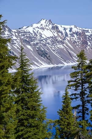 Crater Lake through the pines