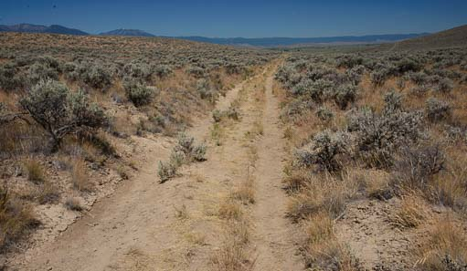 Oregon Trail Wagon train ruts
