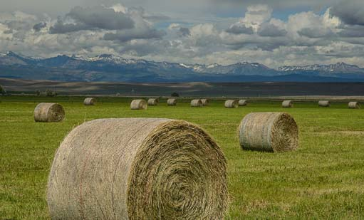 Hay bales in Baker Oregon