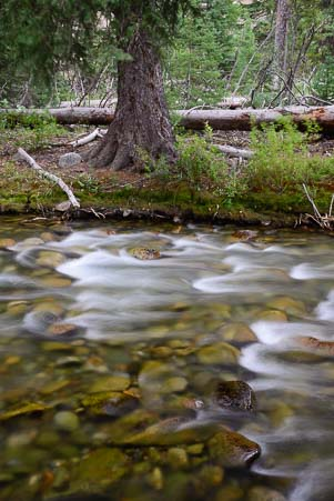 Blurred water with trees at the Big Wood River in Ketchum Idaho