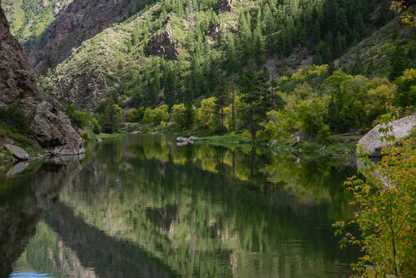 Trees reflect in the Black Canyon's Gunnison River in Colorado