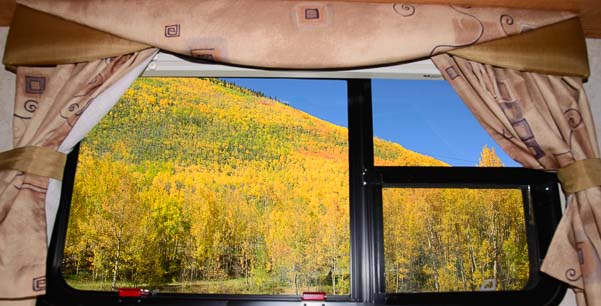 Colorful view of golden aspen from our RV window