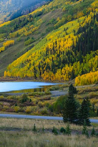 Fall color at a lake near Ouray Colorado