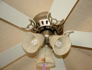 Ceiling Fan LED Lightbulbs