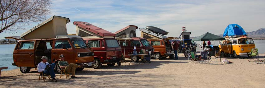 Volkswagon Westfalia buses at Buses by the Beach each in Lake Havasu Arizona