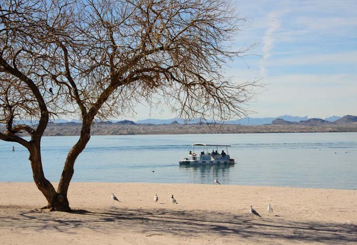 White sand beach at Lake Havasu State Park