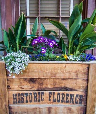 Historic Florence Arizona flower box