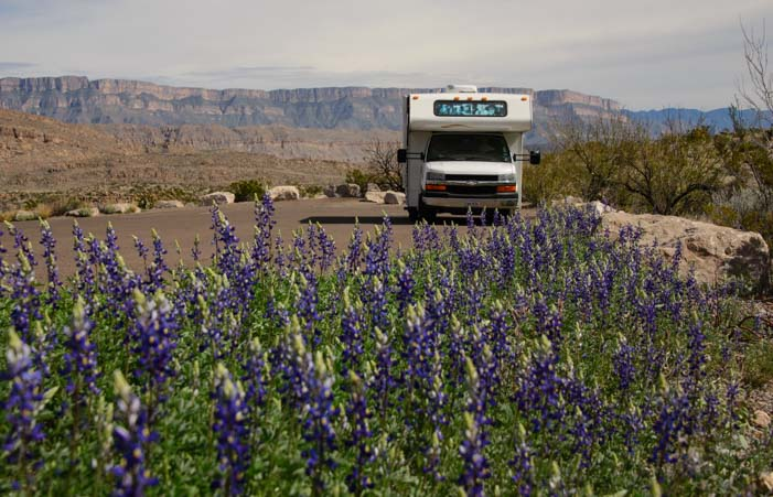 RV surrounded by Texas bluebonnet flowers