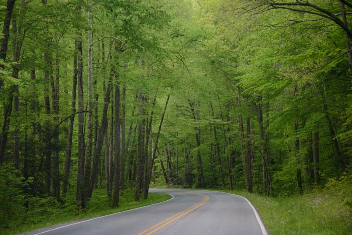 Newfound Gap Road Great Smoky Mountains National Park North Carolina