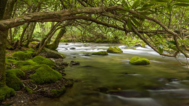 River Great Smoky Mountains National Park North Carolina