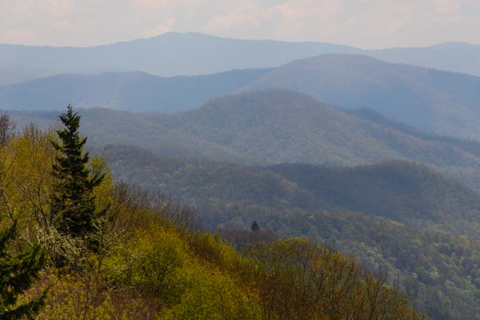 The Smokies N. Carolina